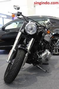 Harley Davidson Soft Tail Slim FLS 103 01