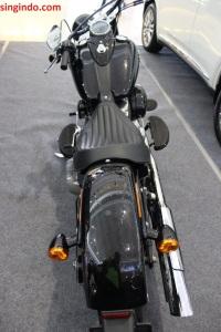 Harley Davidson Soft Tail Slim FLS 103 02