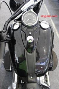 Harley Davidson Soft Tail Slim FLS 103 05