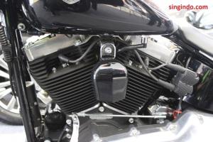 Harley Davidson Soft Tail Slim FLS 103 09