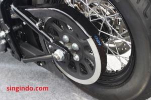 Harley Davidson Soft Tail Slim FLS 103 10