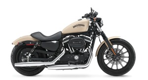 Harley-Davidson Iron XL 883, JKT 418 jt, BTM 230 jt