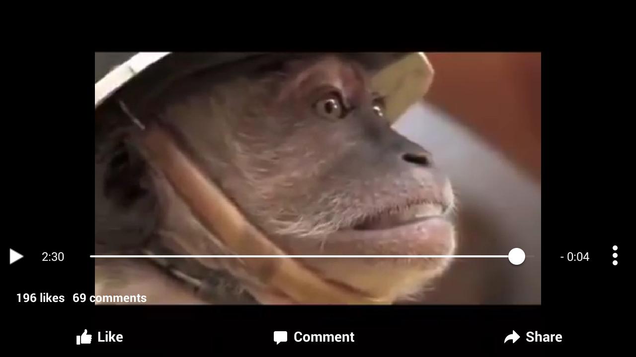 Penyiksaan Dibalik Atraksi Topeng Monyet Singindo