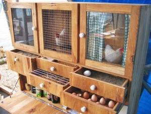 Beberapa Contoh Kandang yang Membuat Ayam Betah 05