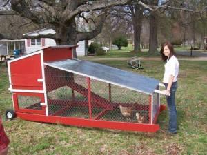 Beberapa Contoh Kandang yang Membuat Ayam Betah 09