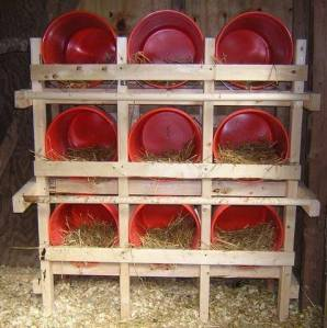 Beberapa Contoh Kandang yang Membuat Ayam Betah 16