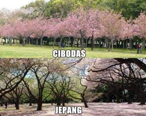 Ternyata Indonesia Gak Kalah Cantik Gan... Semuanya Ada di Indonesia! 04