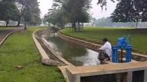 Hiburan Jokowi di Pagi Hari… Kasih Makan Ikan dan Kecebong