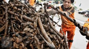 Sampah Bungkus Kabel Depan Istana Merdeka Diduga Milik PLN