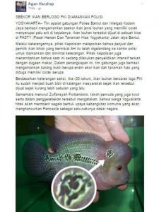 """Ikan Louhan Corak """"Palu Arit"""" Gemparkan Jagad Maya"""