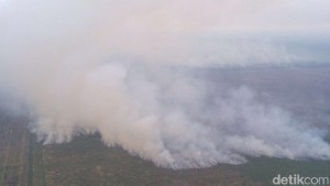 Jakarta Kebanjiran, di Riau Api Ngamuk 4