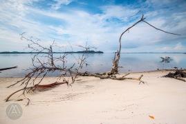 surga-bawah-laut-indonesia-barat-ada-di-pulau-abang-2