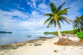 surga-bawah-laut-indonesia-barat-ada-di-pulau-abang-4