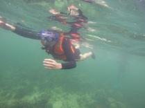 Surga Bawah Laut Indonesia Barat Ada di Pulau Abang